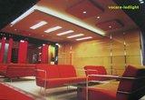 LED paneel  voor systeemplafond 30x120