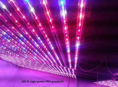 20 watt LED TL 120cm 230V wachs licht - LED lampen partner